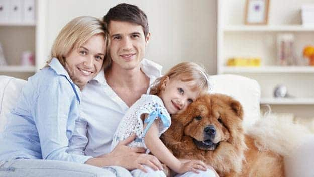 Wills & Trusts dog-young-family Direct Wills Dormers Wells